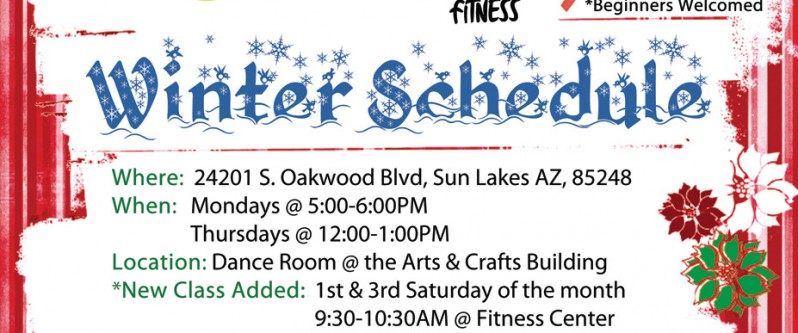 Zumba Holiday Flyer